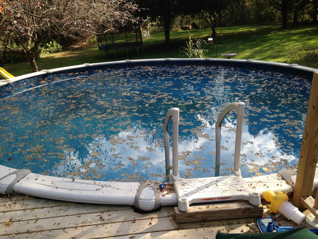 Manutenção de piscinas - folhas